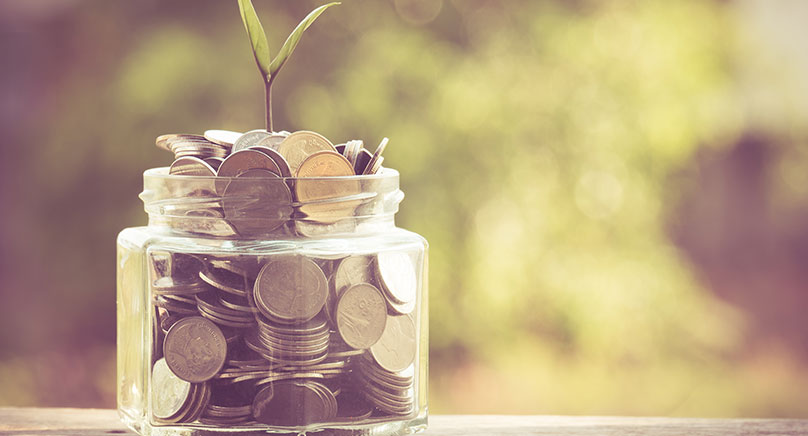 money in jar with plant