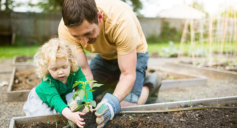 parent helping young child plant flower